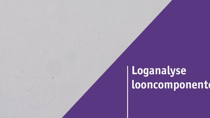 Loganalyse looncomponenten